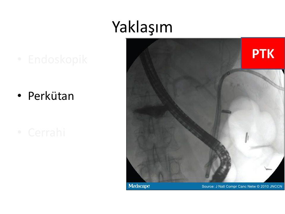 Yaklaşım PTK Endoskopik Perkütan Cerrahi