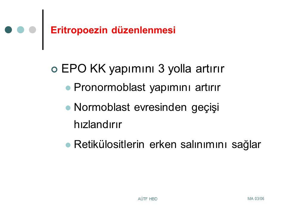 Eritropoezin düzenlenmesi