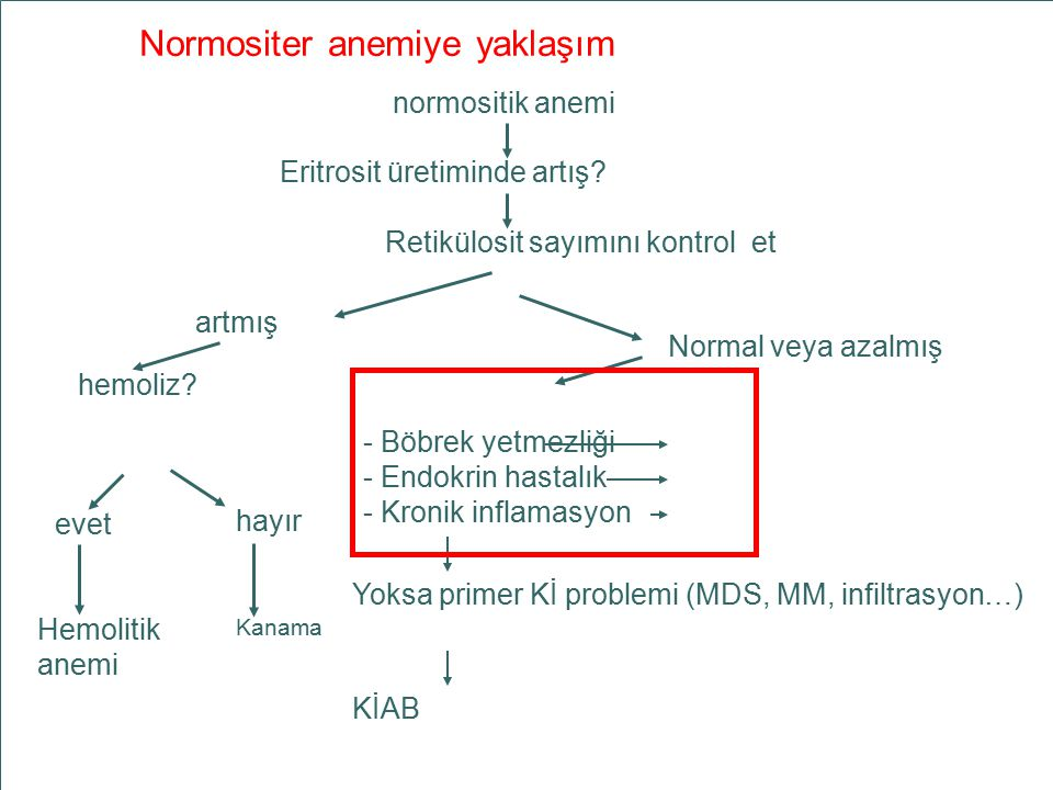 Normositer anemiye yaklaşım
