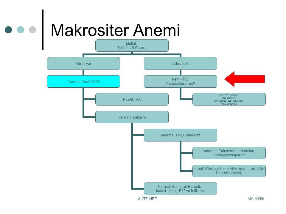 Makrositer Anemi AÜTF HBD MA 03/06