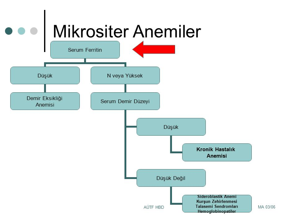 Mikrositer Anemiler AÜTF HBD MA 03/06