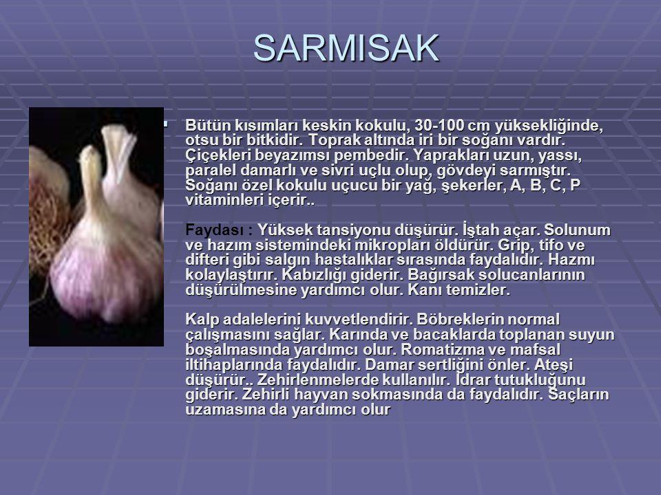 SARMISAK