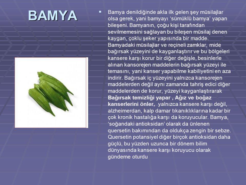 BAMYA