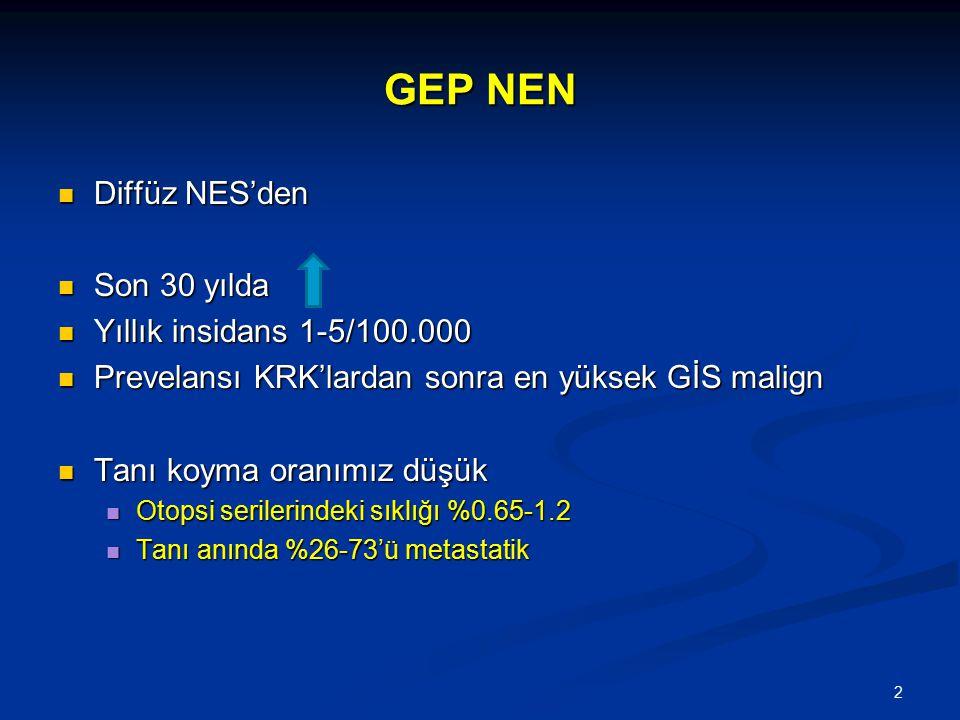 GEP NEN Diffüz NES'den Son 30 yılda Yıllık insidans 1-5/100.000