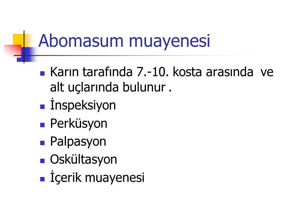Abomasum muayenesi Karın tarafında 7.-10. kosta arasında ve alt uçlarında bulunur . İnspeksiyon. Perküsyon.