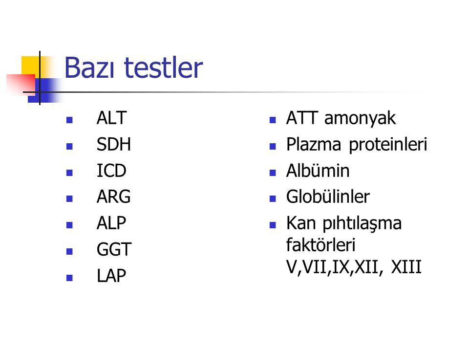 Bazı testler ALT SDH ICD ARG ALP GGT LAP ATT amonyak