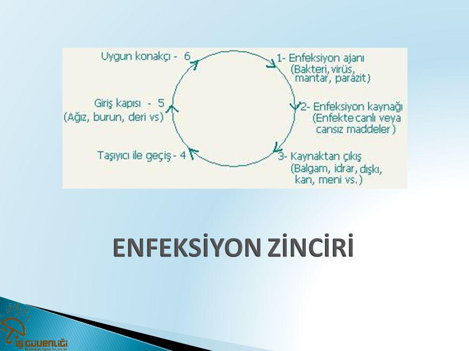 ENFEKSİYON ZİNCİRİ 36 36