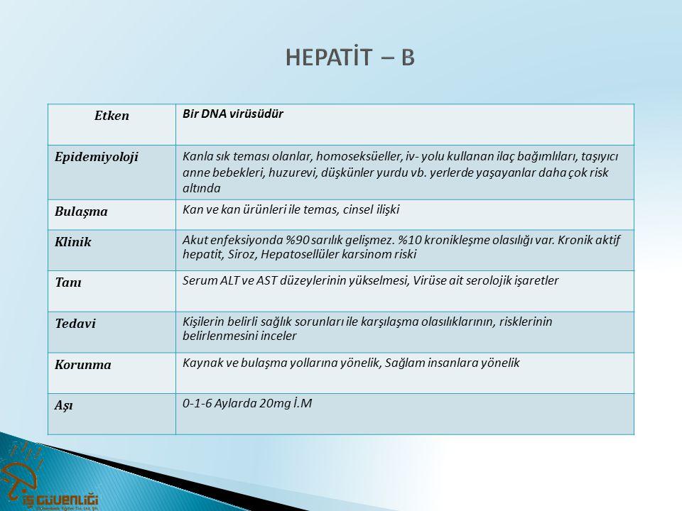 HEPATİT – B Etken Bir DNA virüsüdür Epidemiyoloji