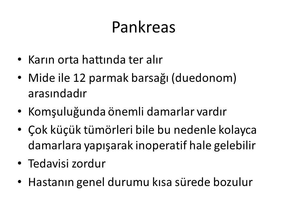 Pankreas Karın orta hattında ter alır