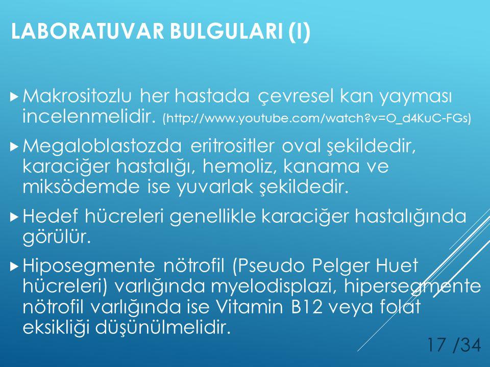LABORATUVAR BULGULARI (I)