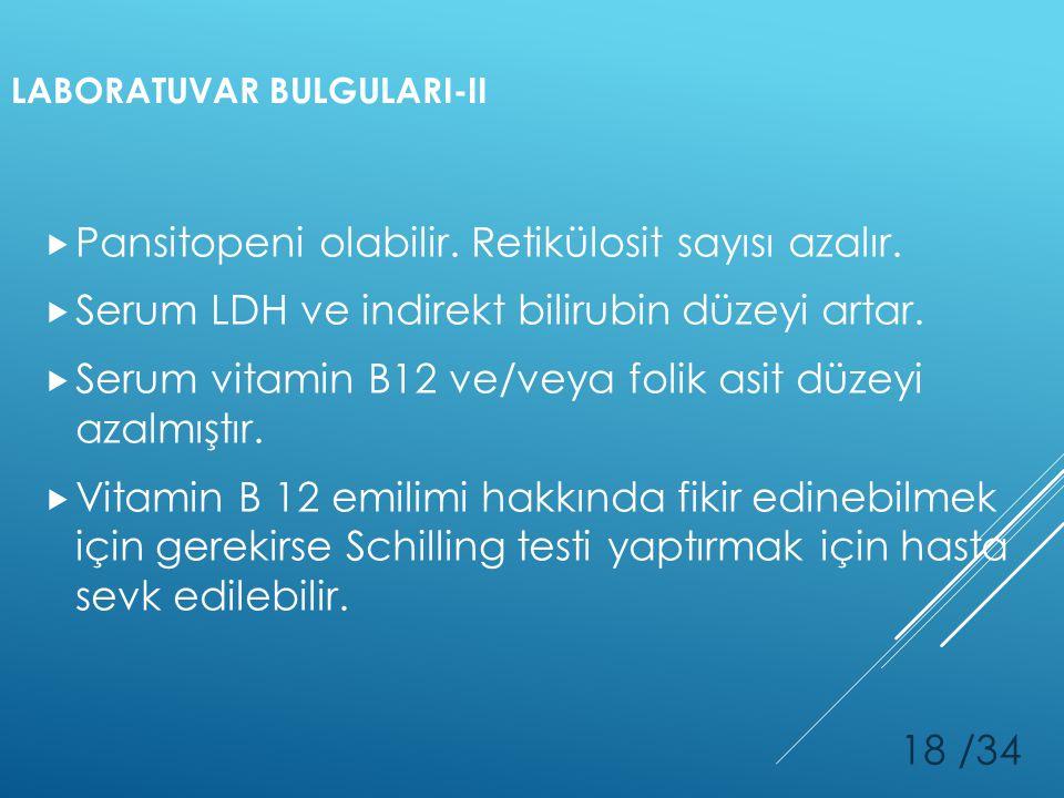 LABORATUVAR BULGULARI-II