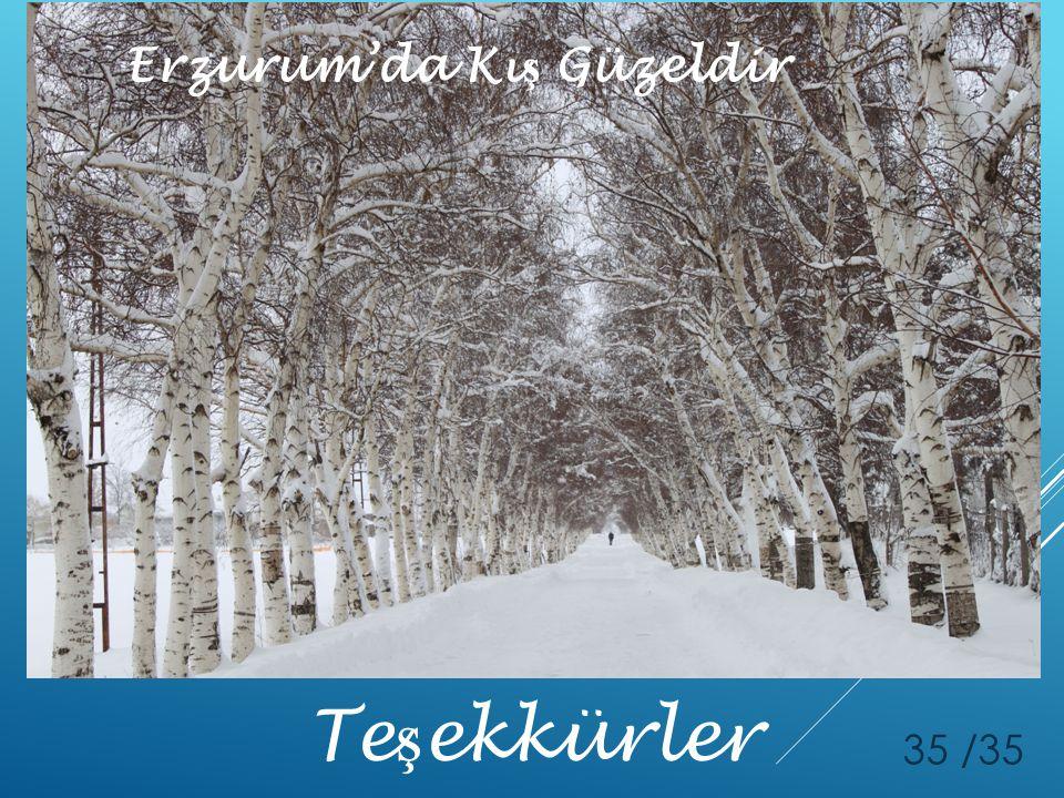 Erzurum'da Kış Güzeldir