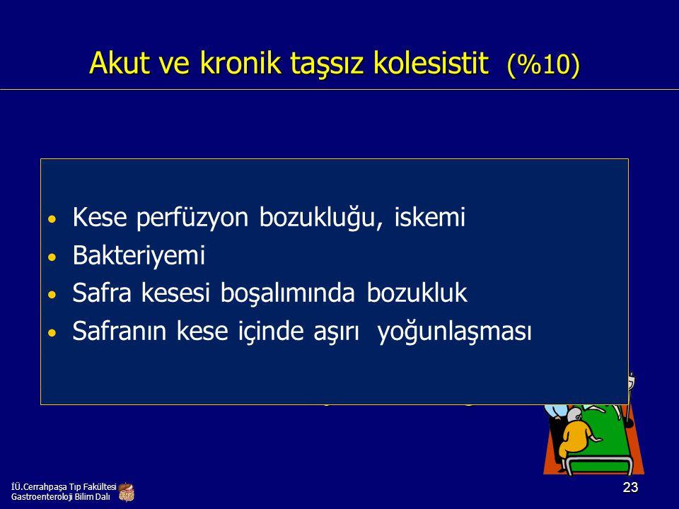 Akut ve kronik taşsız kolesistit (%10)