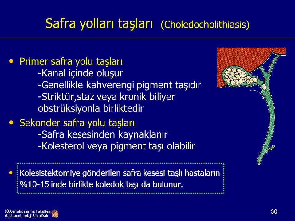 Safra yolları taşları (Choledocholithiasis)