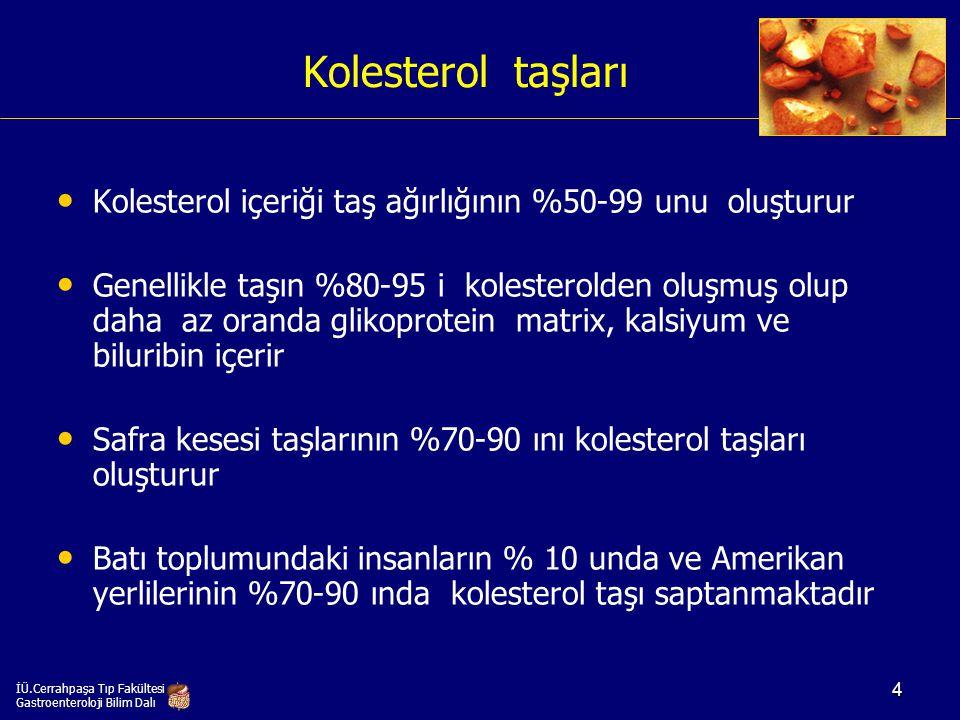 Kolesterol taşları Kolesterol içeriği taş ağırlığının %50-99 unu oluşturur.