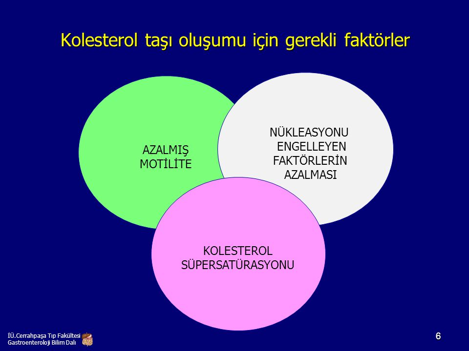 Kolesterol taşı oluşumu için gerekli faktörler