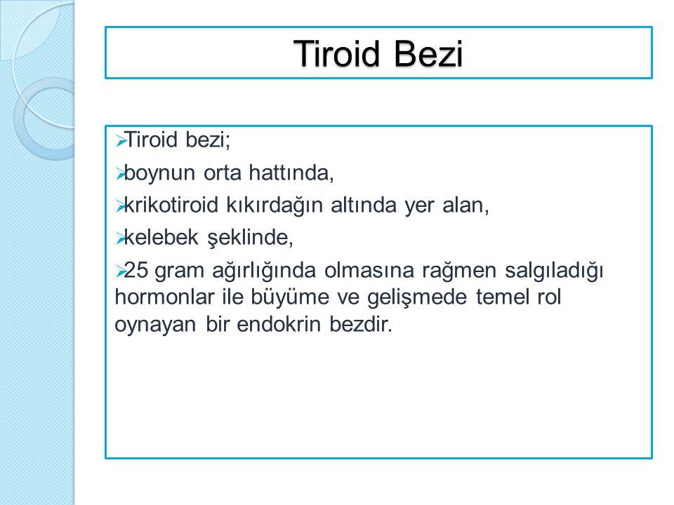 Tiroid Bezi Tiroid bezi; boynun orta hattında,
