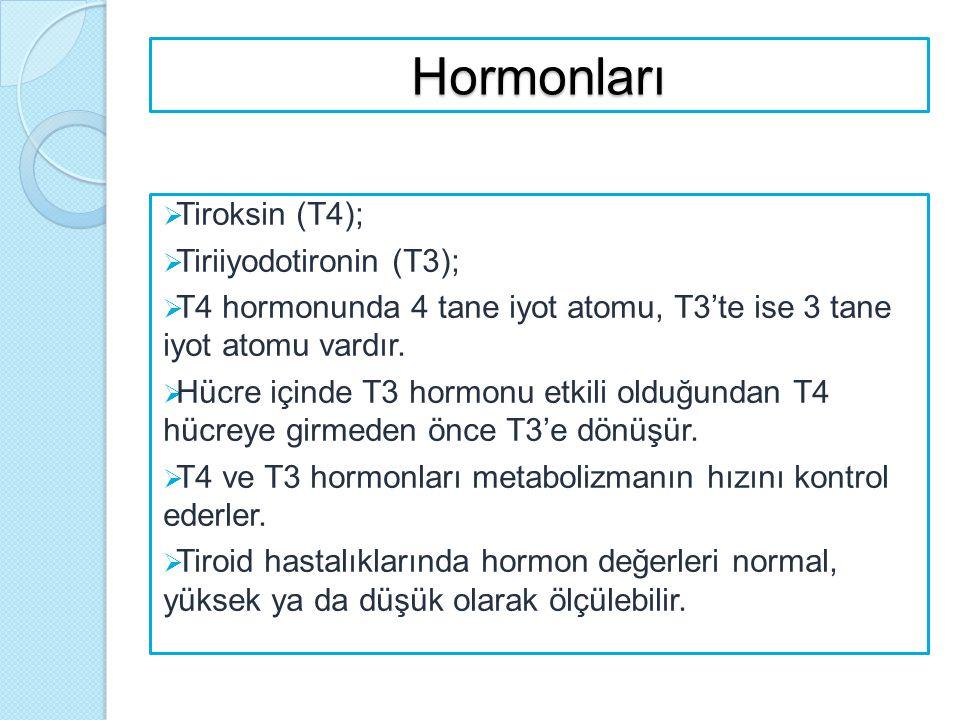 Hormonları Tiroksin (T4); Tiriiyodotironin (T3);
