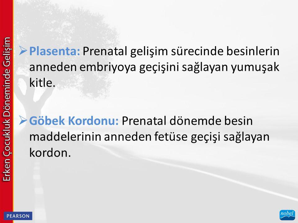 Plasenta: Prenatal gelişim sürecinde besinlerin anneden embriyoya geçişini sağlayan yumuşak kitle.
