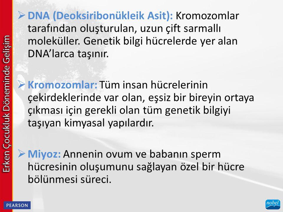 DNA (Deoksiribonükleik Asit): Kromozomlar tarafından oluşturulan, uzun çift sarmallı moleküller. Genetik bilgi hücrelerde yer alan DNA'larca taşınır.