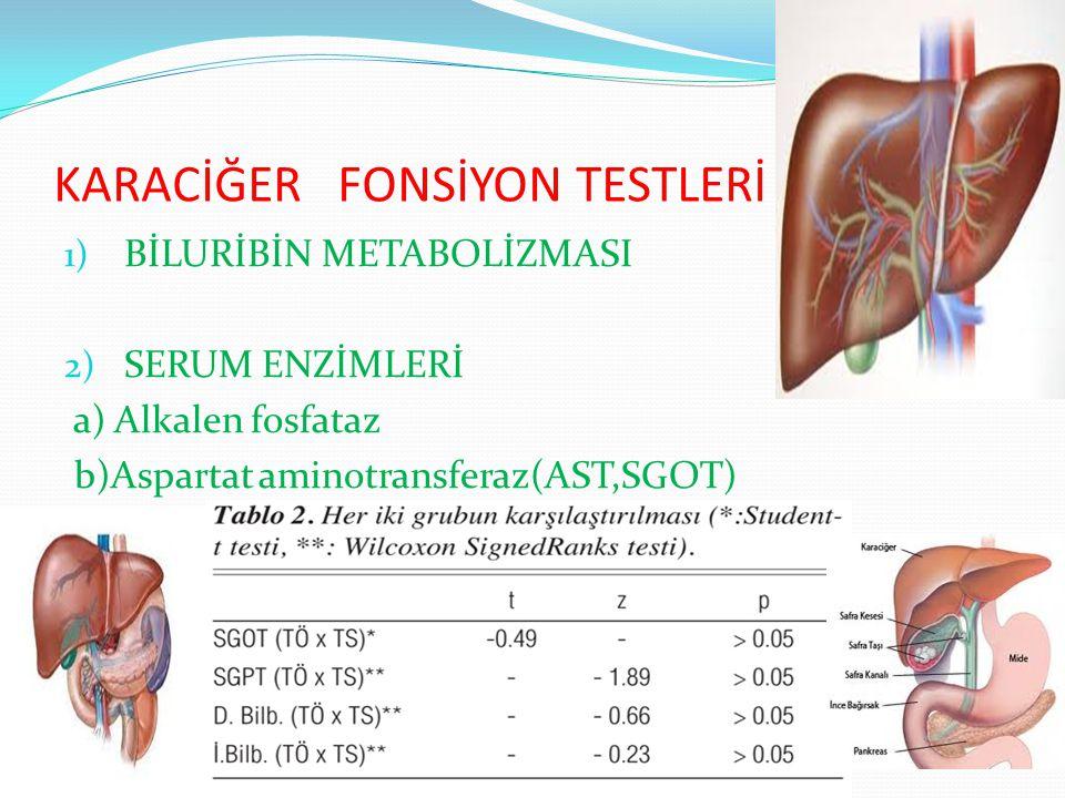 KARACİĞER FONSİYON TESTLERİ