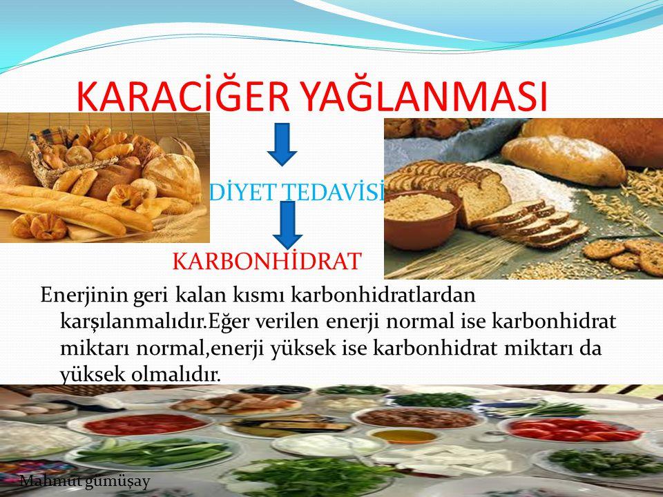 KARACİĞER YAĞLANMASI DİYET TEDAVİSİ KARBONHİDRAT