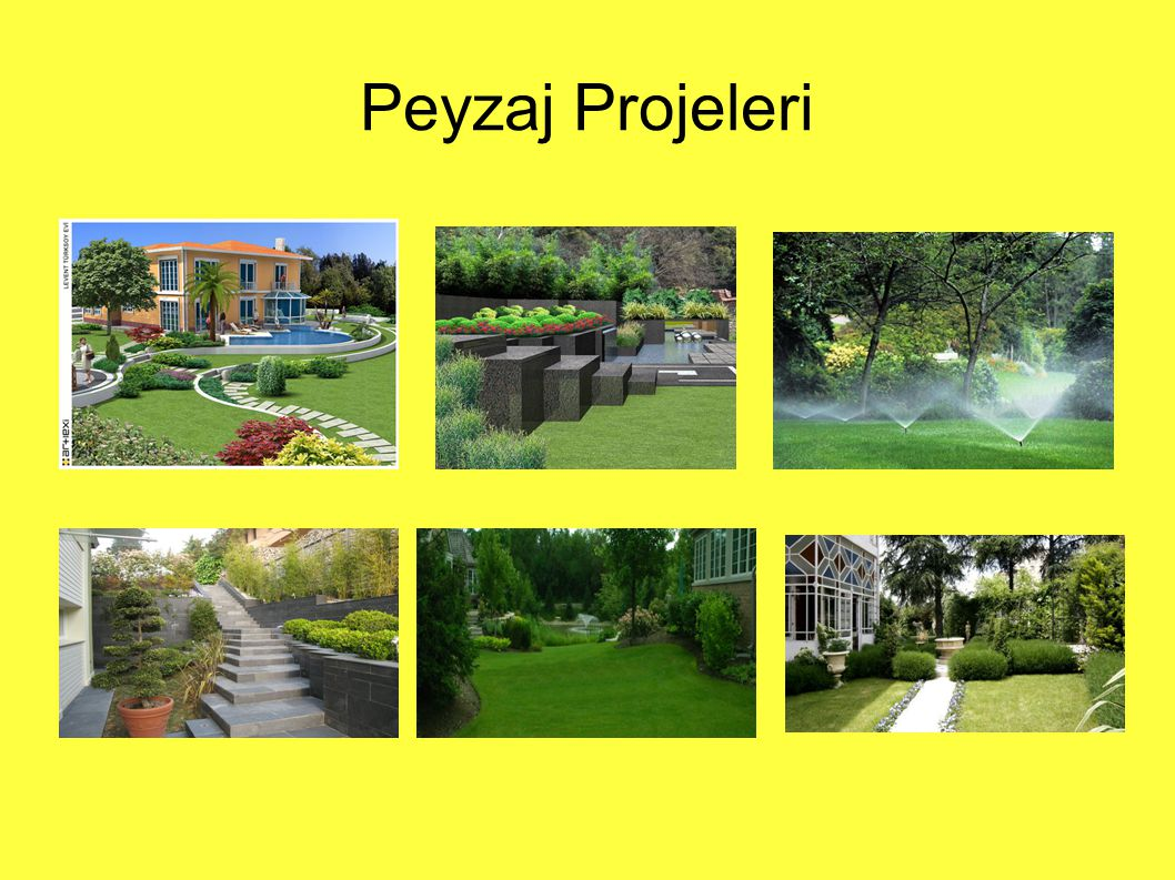 Peyzaj Projeleri
