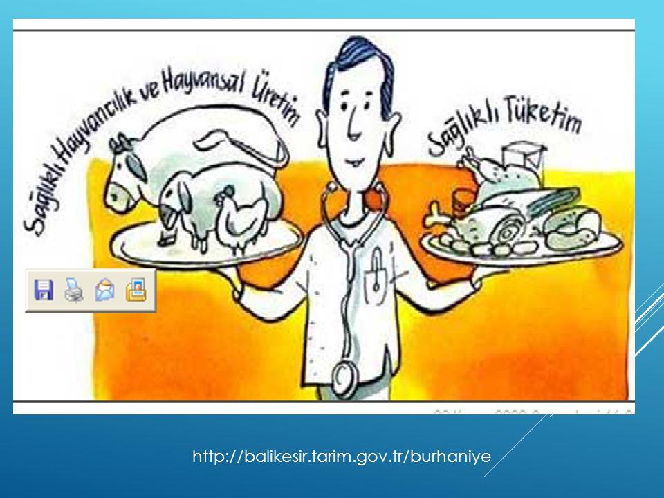 http://balikesir.tarim.gov.tr/burhaniye