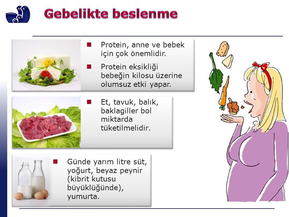 Gebelikte beslenme Protein, anne ve bebek için çok önemlidir.