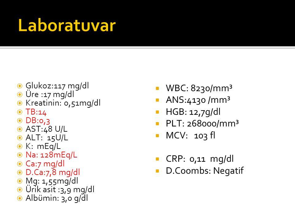 WBC: 8230/mm³ ANS:4130 /mm³ HGB: 12,7g/dl PLT: 268000/mm³ MCV: 103 fl