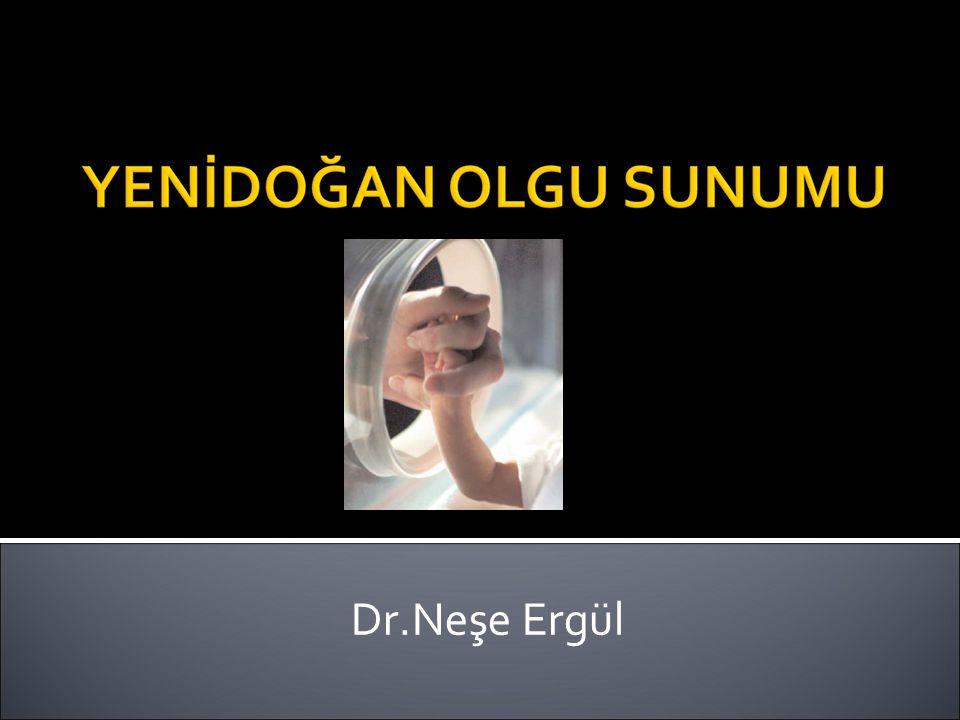 Dr.Neşe Ergül