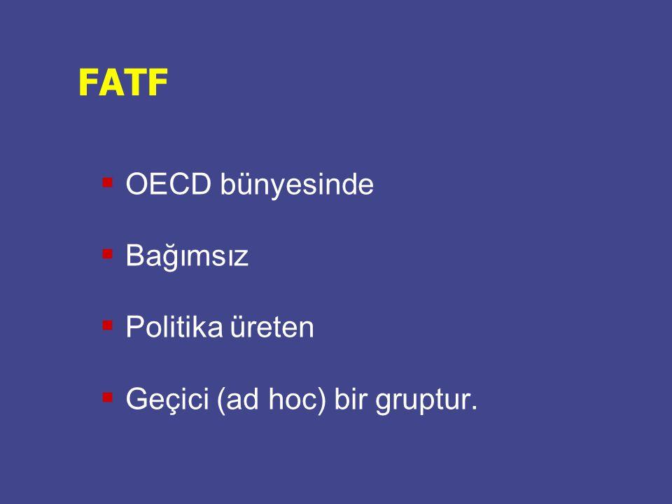 FATF OECD bünyesinde Bağımsız Politika üreten