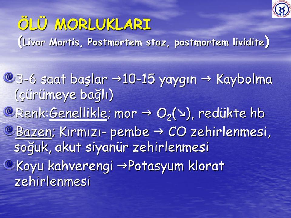 ÖLÜ MORLUKLARI (Livor Mortis, Postmortem staz, postmortem lividite)