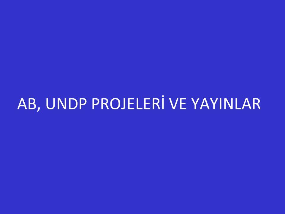 AB, UNDP PROJELERİ VE YAYINLAR