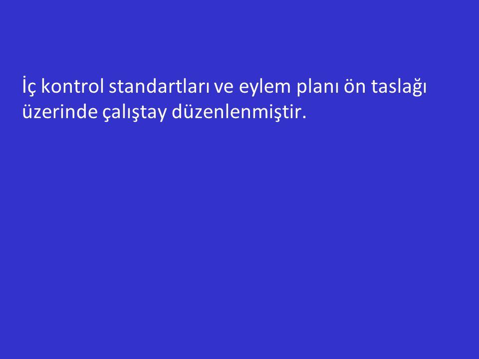 İç kontrol standartları ve eylem planı ön taslağı üzerinde çalıştay düzenlenmiştir.