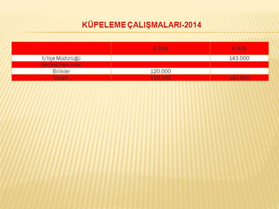 KÜPELEME ÇALIŞMALARI-2014
