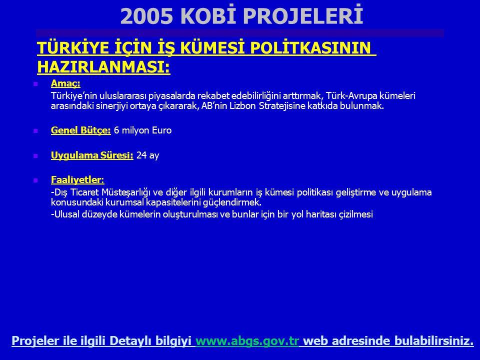 2005 KOBİ PROJELERİ TÜRKİYE İÇİN İŞ KÜMESİ POLİTKASININ HAZIRLANMASI: