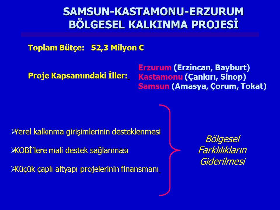 SAMSUN-KASTAMONU-ERZURUM BÖLGESEL KALKINMA PROJESİ