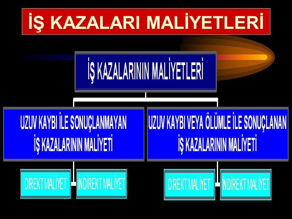 İŞ KAZALARI MALİYETLERİ