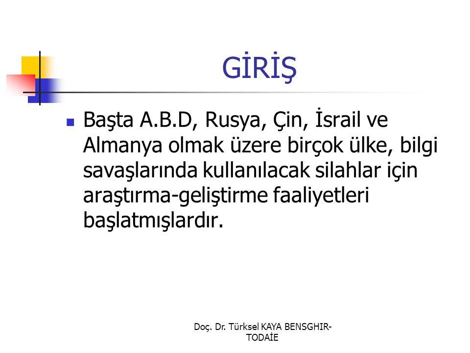 Doç. Dr. Türksel KAYA BENSGHIR-TODAİE