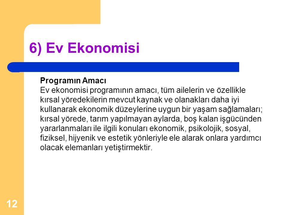6) Ev Ekonomisi