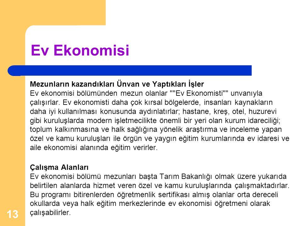Ev Ekonomisi