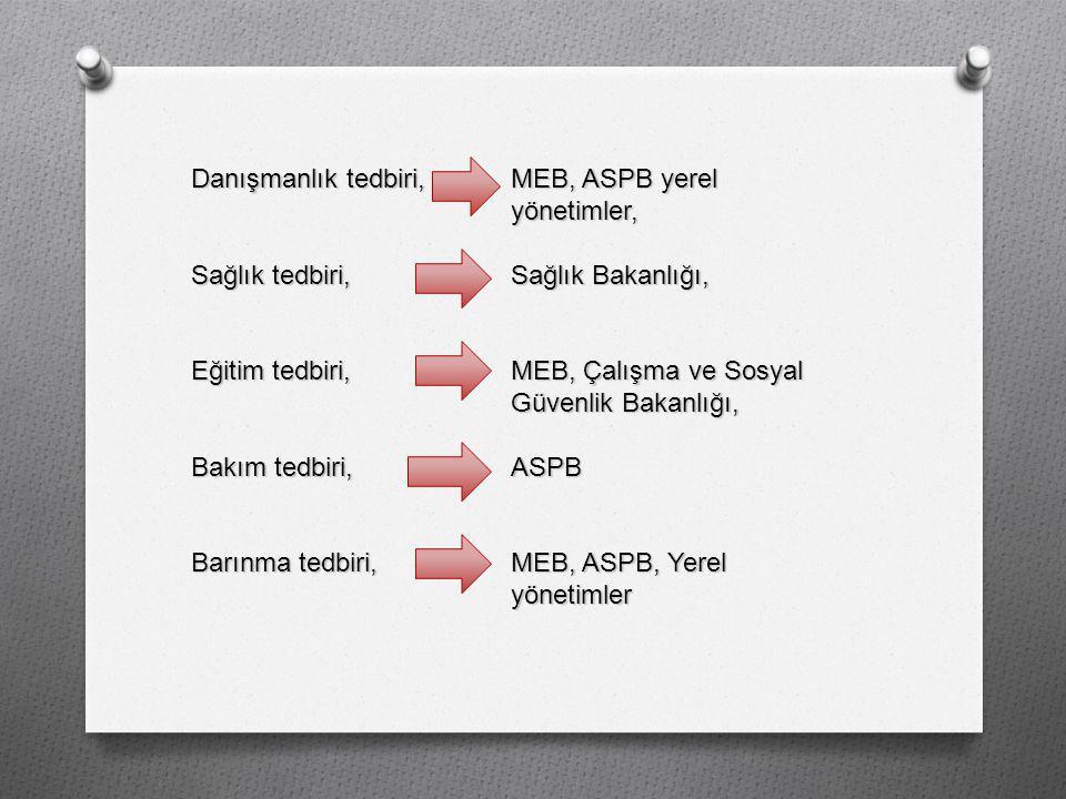 Danışmanlık tedbiri, MEB, ASPB yerel yönetimler,