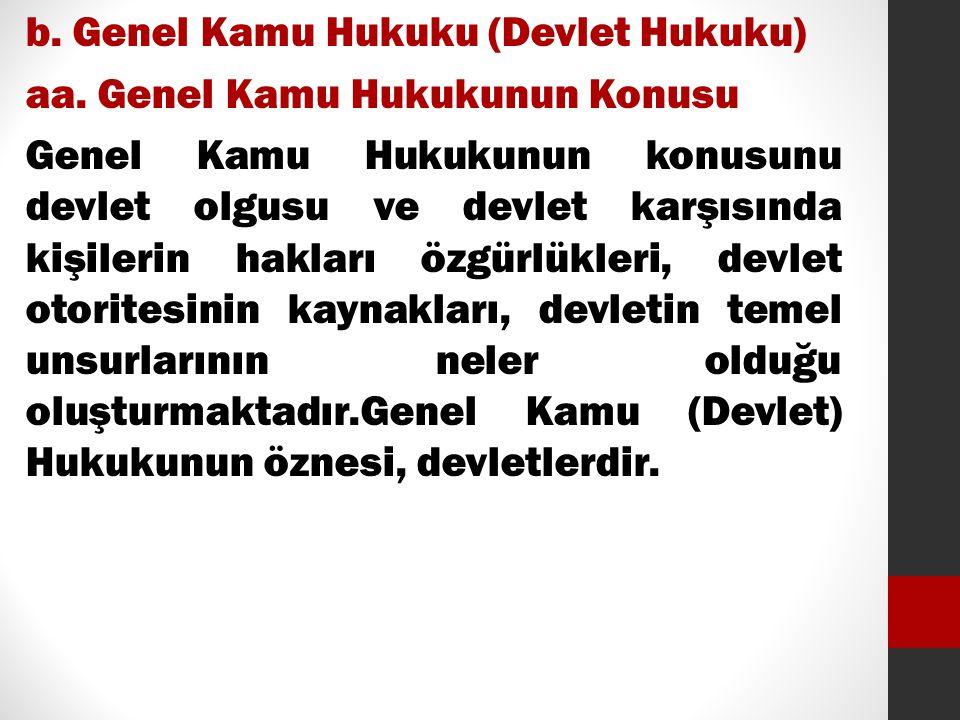 b. Genel Kamu Hukuku (Devlet Hukuku) aa