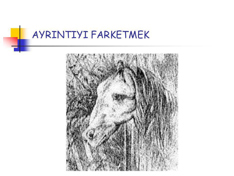 AYRINTIYI FARKETMEK