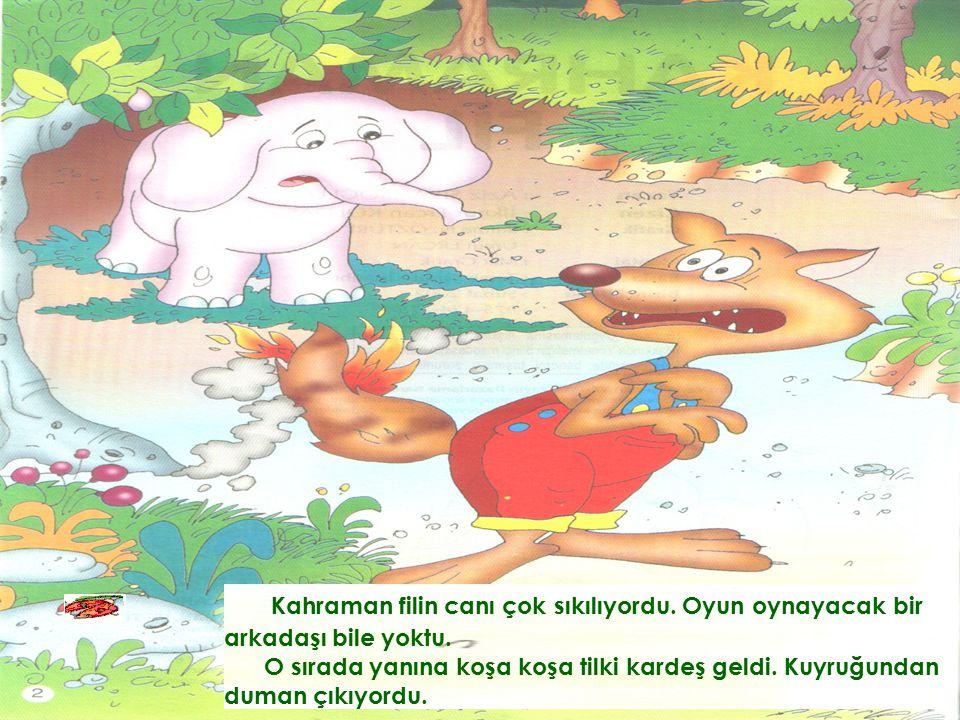 Kahraman filin canı çok sıkılıyordu