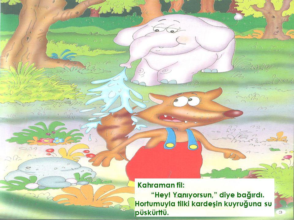 Kahraman fil: Hey! Yanıyorsun, diye bağırdı. Hortumuyla tilki kardeşin kuyruğuna su püskürttü.
