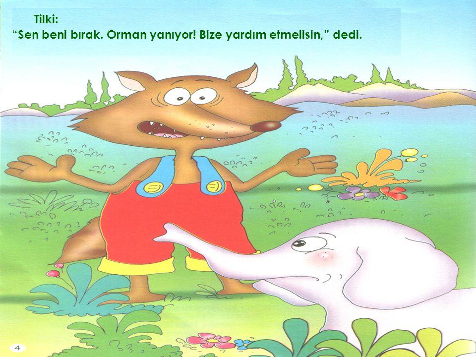Tilki: Sen beni bırak. Orman yanıyor! Bize yardım etmelisin, dedi.