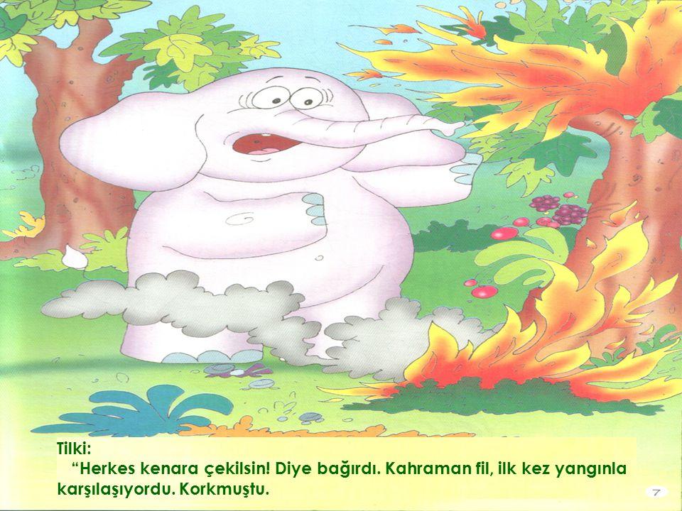 Tilki: Herkes kenara çekilsin. Diye bağırdı. Kahraman fil, ilk kez yangınla karşılaşıyordu.