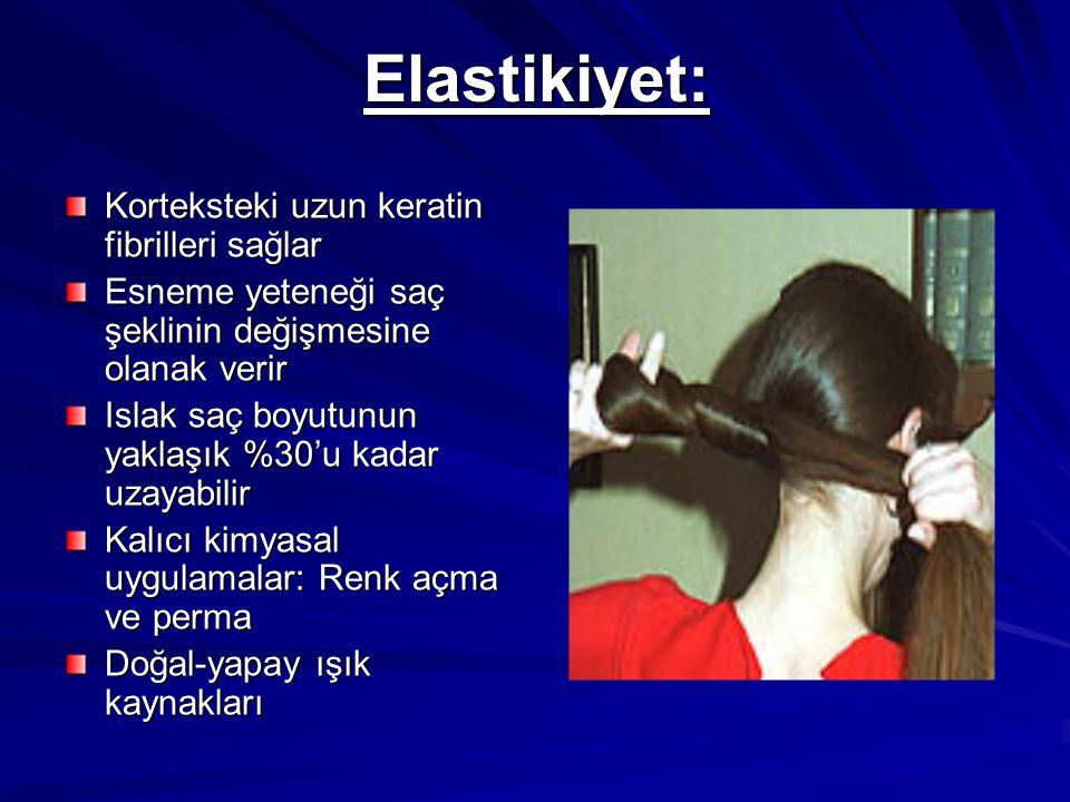 Elastikiyet: Korteksteki uzun keratin fibrilleri sağlar